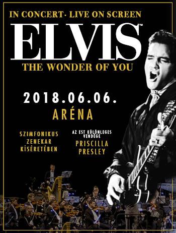 Elvis show Budapesten